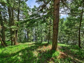 Photo 17: 2506 HEFFLEY-LOUIS CREEK Road in Kamloops: Heffley Recreational for sale : MLS®# 157172