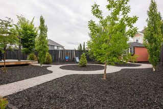 Photo 46: 7704 19 Avenue in Edmonton: Zone 53 House for sale : MLS®# E4203964
