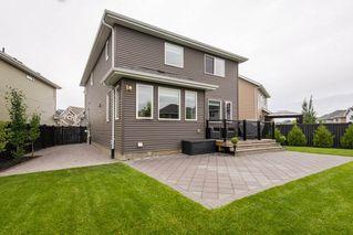 Photo 43: 7704 19 Avenue in Edmonton: Zone 53 House for sale : MLS®# E4203964