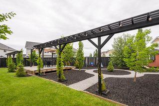 Photo 45: 7704 19 Avenue in Edmonton: Zone 53 House for sale : MLS®# E4203964