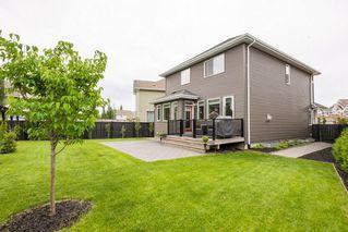 Photo 42: 7704 19 Avenue in Edmonton: Zone 53 House for sale : MLS®# E4203964
