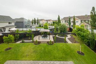 Photo 33: 7704 19 Avenue in Edmonton: Zone 53 House for sale : MLS®# E4203964