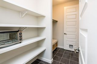 Photo 15: 7704 19 Avenue in Edmonton: Zone 53 House for sale : MLS®# E4203964