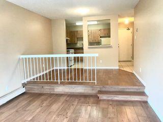 Photo 6: 402 9810 178 Street in Edmonton: Zone 20 Condo for sale : MLS®# E4207640