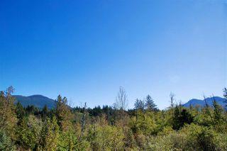 "Photo 19: 9 41050 TANTALUS Road in Squamish: Tantalus 1/2 Duplex for sale in ""Greenside Estates"" : MLS®# R2508930"