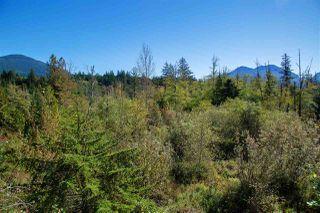"Photo 18: 9 41050 TANTALUS Road in Squamish: Tantalus 1/2 Duplex for sale in ""Greenside Estates"" : MLS®# R2508930"