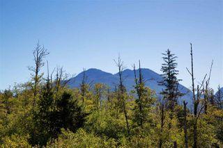 "Photo 20: 9 41050 TANTALUS Road in Squamish: Tantalus 1/2 Duplex for sale in ""Greenside Estates"" : MLS®# R2508930"
