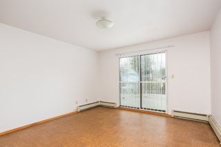 Photo 14: 87 E 46TH Avenue in Vancouver: South Vancouver House for sale (Vancouver East)  : MLS®# R2524377