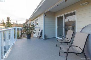 Photo 45: 4341 Shelbourne St in VICTORIA: SE Gordon Head Single Family Detached for sale (Saanich East)  : MLS®# 835438