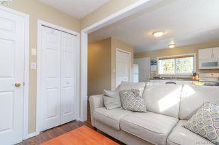 Photo 37: 4341 Shelbourne St in VICTORIA: SE Gordon Head Single Family Detached for sale (Saanich East)  : MLS®# 835438