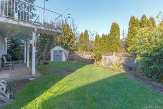 Photo 50: 4341 Shelbourne St in VICTORIA: SE Gordon Head House for sale (Saanich East)  : MLS®# 835438