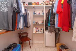 Photo 19: 4341 Shelbourne St in VICTORIA: SE Gordon Head Single Family Detached for sale (Saanich East)  : MLS®# 835438