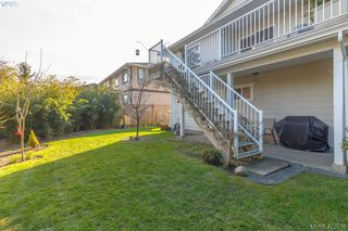 Photo 48: 4341 Shelbourne St in VICTORIA: SE Gordon Head House for sale (Saanich East)  : MLS®# 835438