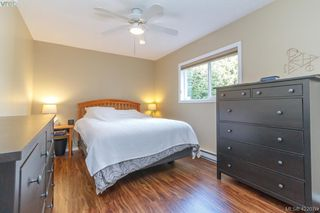 Photo 41: 4341 Shelbourne St in VICTORIA: SE Gordon Head Single Family Detached for sale (Saanich East)  : MLS®# 835438