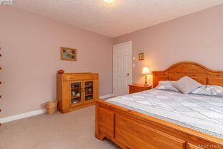 Photo 24: 4341 Shelbourne St in VICTORIA: SE Gordon Head Single Family Detached for sale (Saanich East)  : MLS®# 835438