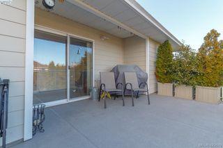 Photo 44: 4341 Shelbourne St in VICTORIA: SE Gordon Head House for sale (Saanich East)  : MLS®# 835438