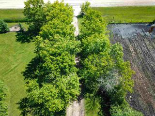 Photo 8: 464004 Hwy 795: Rural Wetaskiwin County House for sale : MLS®# E4205198