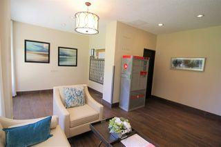 Photo 37: 1202 9808 103 Street in Edmonton: Zone 12 Condo for sale : MLS®# E4209249