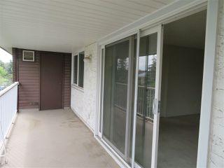 Photo 38: 401 14810 51 Avenue in Edmonton: Zone 14 Condo for sale : MLS®# E4195256