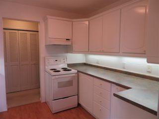 Photo 14: 401 14810 51 Avenue in Edmonton: Zone 14 Condo for sale : MLS®# E4195256