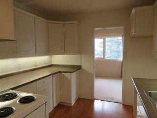 Photo 16: 401 14810 51 Avenue in Edmonton: Zone 14 Condo for sale : MLS®# E4195256