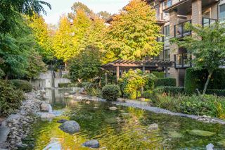 "Photo 34: 503 7488 BYRNEPARK Walk in Burnaby: South Slope Condo for sale in ""GREEN - AUTUMN"" (Burnaby South)  : MLS®# R2505968"
