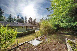 Photo 35: 10631 SANTA MONICA Drive in Delta: Nordel House for sale (N. Delta)  : MLS®# R2489773