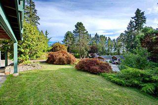 Photo 37: 10631 SANTA MONICA Drive in Delta: Nordel House for sale (N. Delta)  : MLS®# R2489773