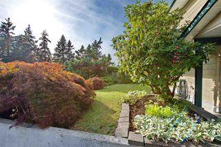 Photo 36: 10631 SANTA MONICA Drive in Delta: Nordel House for sale (N. Delta)  : MLS®# R2489773