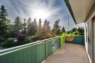 Photo 26: 10631 SANTA MONICA Drive in Delta: Nordel House for sale (N. Delta)  : MLS®# R2489773