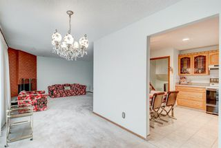 Photo 6: 35 Thornaby Crescent NW in Calgary: Thorncliffe Detached for sale : MLS®# A1046988