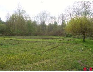 """Photo 4: 36241 DAWSON Road in Abbotsford: Abbotsford East House for sale in """"Straiton/Sumas Mtn"""" : MLS®# F2701446"""