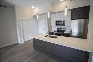 Photo 4: 305 70 Philip Lee Drive in Winnipeg: Crocus Meadows Condominium for sale (3K)  : MLS®# 202008072