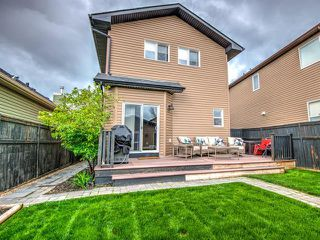 Photo 45: 110 EVANSDALE Link NW in Calgary: Evanston Detached for sale : MLS®# C4296728