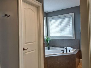 Photo 22: 20351 46 Avenue NW in Edmonton: Zone 58 House for sale : MLS®# E4219468