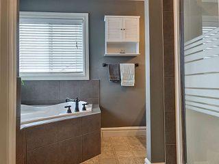 Photo 23: 20351 46 Avenue NW in Edmonton: Zone 58 House for sale : MLS®# E4219468
