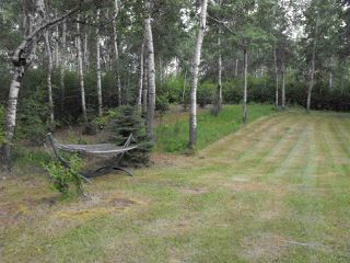 Photo 9: 216 56225 Rd Rd 43: Rural St. Paul County Cottage for sale : MLS®# E4165380