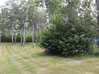 Photo 8: 216 56225 Rd Rd 43: Rural St. Paul County Cottage for sale : MLS®# E4165380