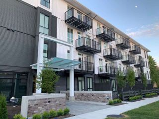 "Photo 1: 205 10168 149TH Street in Surrey: Guildford Condo for sale in ""Guildhouse II"" (North Surrey)  : MLS®# R2398083"