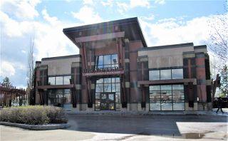 Photo 21: 303 2420 108 Street in Edmonton: Zone 16 Condo for sale : MLS®# E4196424