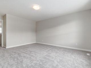 Photo 33: 221 RAVENSTERN Crescent SE: Airdrie Detached for sale : MLS®# A1019366