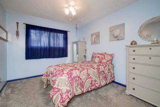 Photo 20: 15215 87 Avenue in Edmonton: Zone 22 House for sale : MLS®# E4165600