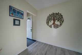 Photo 5: 15215 87 Avenue in Edmonton: Zone 22 House for sale : MLS®# E4165600
