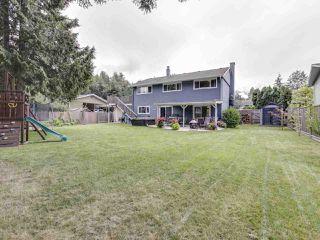 "Photo 17: 2183 SKYLINE Drive in Squamish: Garibaldi Highlands House for sale in ""Garibaldi Estates"" : MLS®# R2403833"