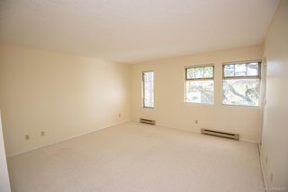 Photo 17: 4 909 Admirals Rd in Esquimalt: Es Esquimalt Row/Townhouse for sale : MLS®# 844251