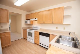 Photo 9: 4 909 Admirals Rd in Esquimalt: Es Esquimalt Row/Townhouse for sale : MLS®# 844251
