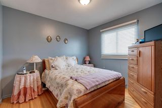 Photo 14: 4020 5 Avenue SW in Calgary: Wildwood Detached for sale : MLS®# A1048141