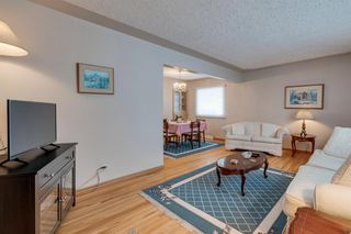 Photo 4: 4020 5 Avenue SW in Calgary: Wildwood Detached for sale : MLS®# A1048141