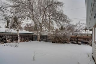 Photo 20: 4020 5 Avenue SW in Calgary: Wildwood Detached for sale : MLS®# A1048141