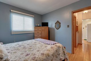 Photo 15: 4020 5 Avenue SW in Calgary: Wildwood Detached for sale : MLS®# A1048141